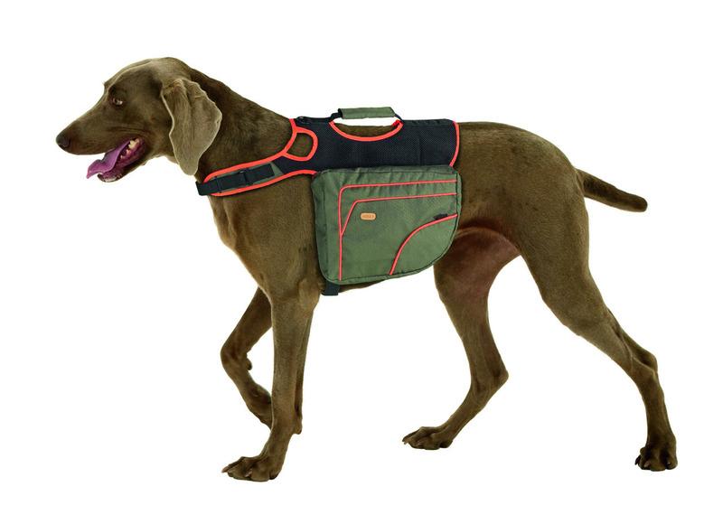 af90fd709a0 Batoh na záda pro psa Reflexní Zeleno-oranžový