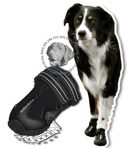 Botičky pro psa ochranné WALKER ACTIVE 2ks XL  979eaff4b6