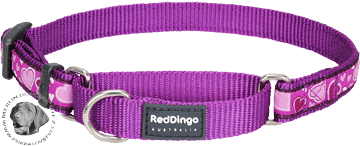 Obojek Red Dingo polostahovací pro psa 26-40cm/15mm Breezy Love Purple