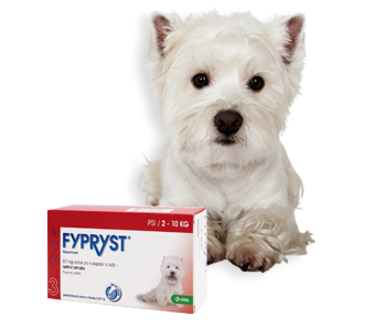 Fypryst Spot-on Dog S sol 1x0,67ml (2-10kg) AKCE