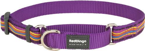 Obojek Red Dingo polostahovací pro psa 26-40cm/15mm Dreamstream Purple