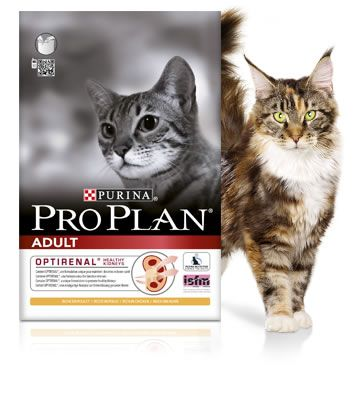 Purina Proplan Cat Adult Chicken&Rice 1,5kg